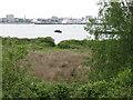 SU4110 : View towards Town Quay by Alex McGregor