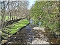 NY5118 : Haweswater Beck at Bampton by Lis Burke