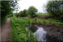 SD9201 : The Fairbottom Branch Canal by Bill Boaden
