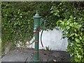 N9653 : Pump, Co Meath by C O'Flanagan