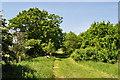 TM4593 : Three Gates Farm Wood by Ashley Dace