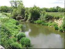 TQ0524 : River Arun south of Harsfold Farm by Dave Spicer