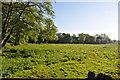 TF9924 : Fields near Bintree Mill by Ashley Dace