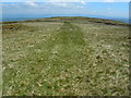 NY5208 : Grassy path to Wasdale Pike by John Darch