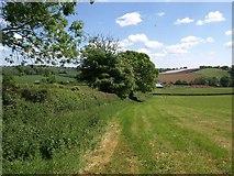 SS7401 : Two Moors Way approaching Paschoe Dairy Farm by Derek Harper
