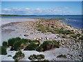 NR5370 : Idyllic Jura by Adam Ward