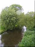 TG1508 : River Yare, Bawburgh by Geographer
