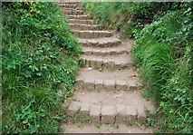 TA0390 : Steps on the Cleveland Way by N Chadwick
