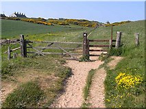 NU2617 : St Oswald's Way at Rumbling Kern by Oliver Dixon