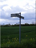 TM2567 : Roadsign on Spring Lane by Adrian Cable
