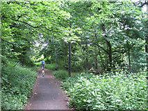 SJ8588 : Footpath to Brook Road, Cheadle by Robin Stott