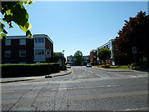 SU8605 : Looking from Broyle Road into Somerstown by Basher Eyre