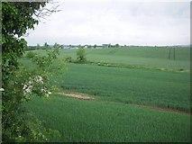 O1353 : Landscape, Co Dublin by C O'Flanagan
