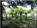 TQ4469 : St. Nicholas' Church, Chislehurst - churchyard (3) by Basher Eyre