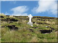 "G7043 : Sligo: Benbulbin ""The Noble Six Cross"" by Michael Murtagh"