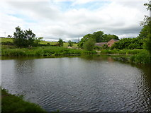SD4863 : Lancaster Canal by Alexander P Kapp