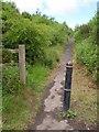 SW9060 : Path, Black Cross by Derek Harper