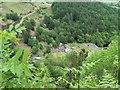 SN9186 : The Old lead Mine, Pen-y-gaer near Llanidloes by nick macneill