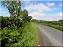 C2125 : Road at Ballygay by Kenneth  Allen