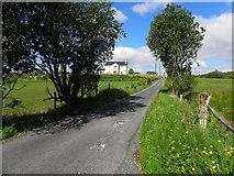 C2126 : Road at Ballygay by Kenneth  Allen