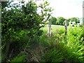 C2231 : Gortnavern Townland by Kenneth  Allen