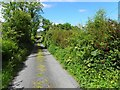 C2231 : Road near Gortnavern by Kenneth  Allen