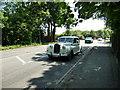 TQ4368 : Wedding car in Blackbrook Lane by Basher Eyre