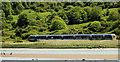 C8234 : Railway between Coleraine and Castlerock by Albert Bridge