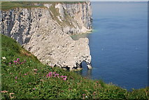 TA2073 : Scale Nab and Bempton Cliffs by N Chadwick