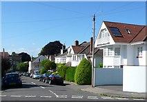 ST5673 : Norland Rd by Nigel Mykura