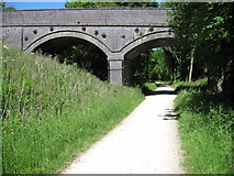 SK1750 : Bridge over Tissington Trail at Highfields Farm by Chris Wimbush