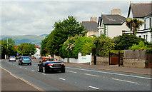J3774 : The Upper Newtownards Road, Belfast (2) by Albert Bridge