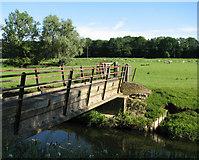 SP9599 : Barrowden: footbridge over the Welland by John Sutton