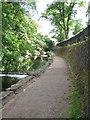 SP0684 : Riverside walk, Edgbaston by Michael Westley