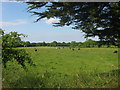 N7663 : Countryside at Rathcarran, Co. Meath by Kieran Campbell