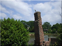 SJ3688 : Princes Park lake, surveyed by a heron by John Lord