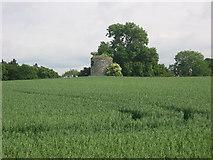 N7577 : Windmill at Headfort Demesne, Kells by Kieran Campbell