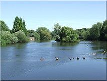 SK3536 : River Derwent, Derby City Centre by Malc McDonald