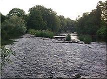 N9632 : Vanessa Weir on the Liffey near Celbridge, Co. Kildare by JP