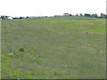 NS3628 : Fields at Monkton by M J Richardson