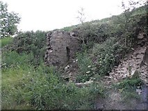 SE0722 : The remains of Hollyn Well Cottages, Pickwood Scar, Norland by Michael Steele