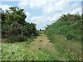 TF4002 : Gap through the embankment - Rings End Nature Reserve by Richard Humphrey