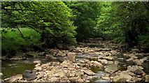 NY9449 : River Derwent Below Hunstanworth by Trevor Littlewood