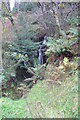 SD3393 : Small Waterfall in Bogle Crag Wood by Anthony Parkes