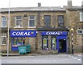 SE1134 : Coral - Allerton Road by Betty Longbottom