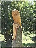 NU0702 : Owl Sculpture by Barbara Carr