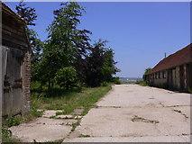 SU8518 : Footpath through Church Farm at Bepton by Shazz