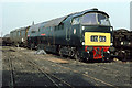 SD6310 : Western Lady at Horwich by Martin Addison