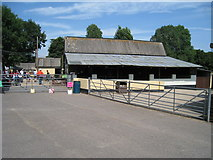 TQ9534 : Petting Barn at Rare Breeds Centre by Oast House Archive