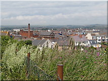 SY6878 : Rooftops from Bincleaves - Weymouth by Sarah Smith